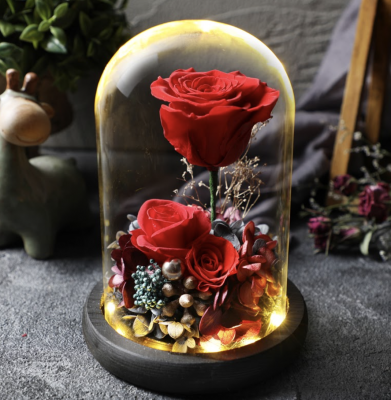 preserved-flowers