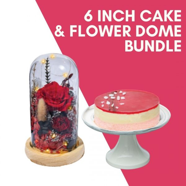 6 inch cake flower dome bundle