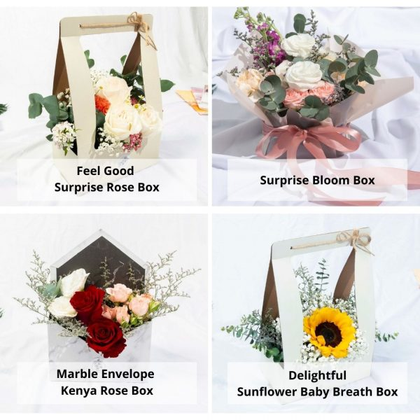 Flower boxes options