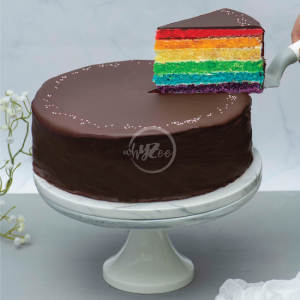 chocolate rainbow cake slice