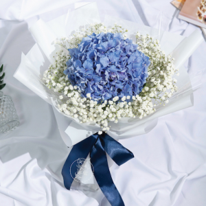 forever young- hydrangea bouquet