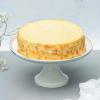 premium new york cheesecake