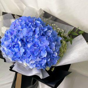Radiance - Hydrangea Bouquet Closeup