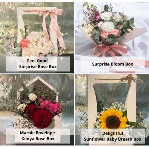 surprise box bundle options
