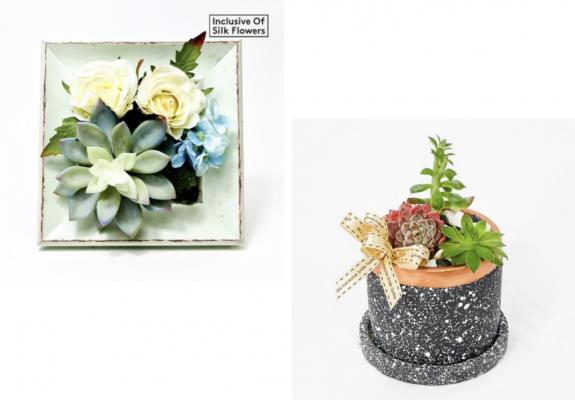 Far East Flora Plant Arrangement