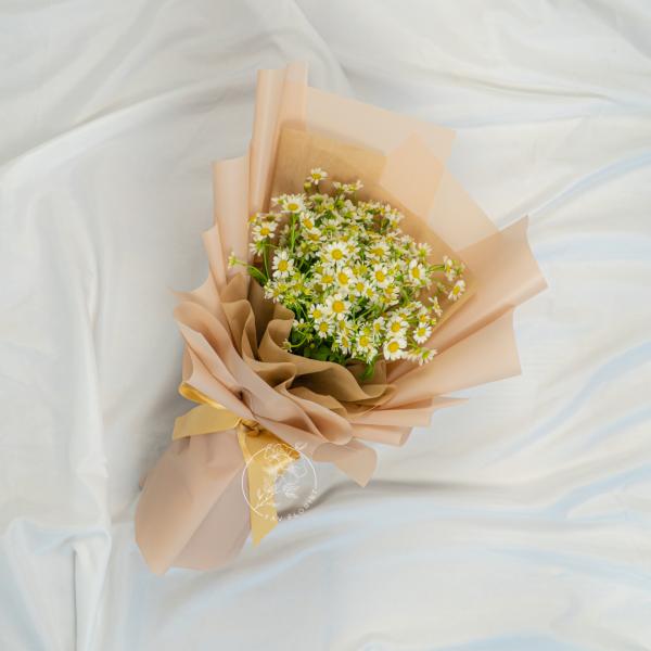 Spring Blossom - Tanacetum Bouquet