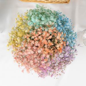 Galaxy Box - Rainbow Baby's Breath Box Close Up