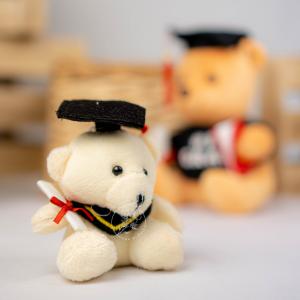 Graduation Bear Mini